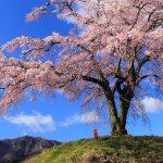 春祭りスポット|川越市